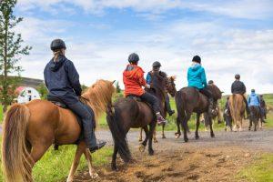 reiter auf islandpferden