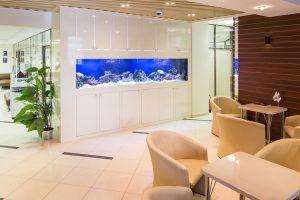 aquarium test, aquarium groeße