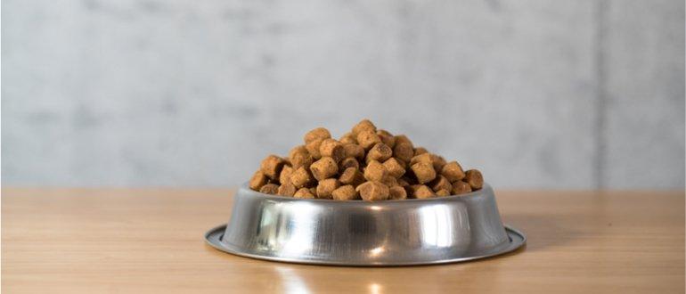 getreidefreies hundegutter test, hundefutter ohne getreide