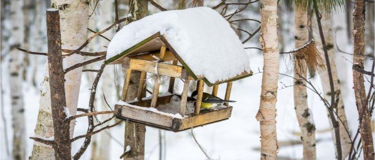 vogelhaus test, vogelhaeuser test