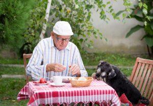 hundefutter test, getreidefreies hundefutter, hundefutter ohne getreide