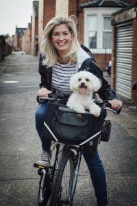 Lenker mit Hundefahrradkorb