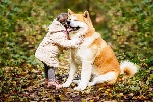 Kind umarmt einen großen Hund