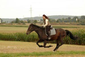 frau reitet braunes pferd auf feld