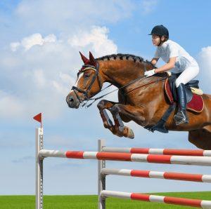 Reiter springt mit hannoveraner über ein hindernis