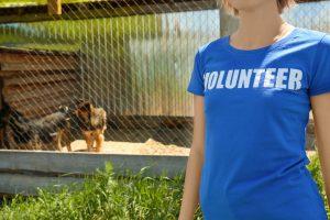 freiwillige aus tierschutzverein vor großem außenkäfig mit zwei hunden