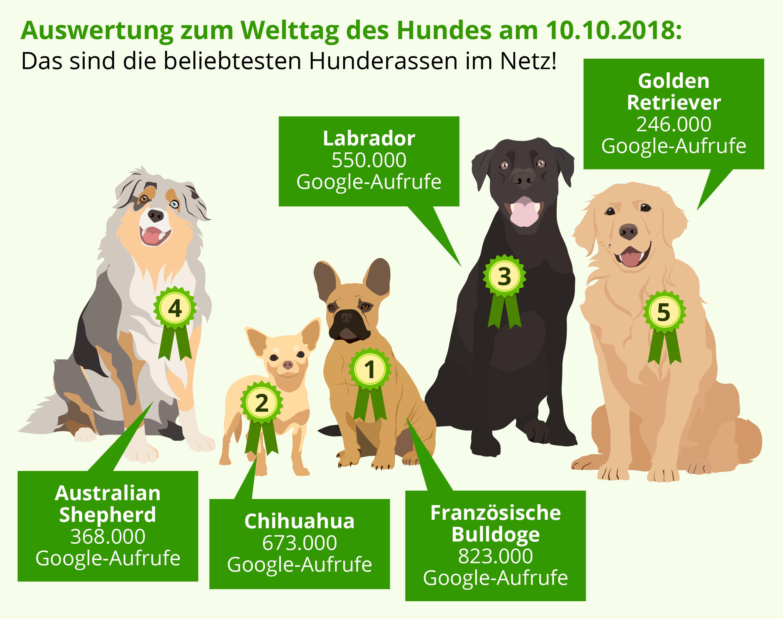 Beliebteste Hunde