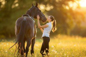 Reiterin und Pferd glücklich auf einem Feld