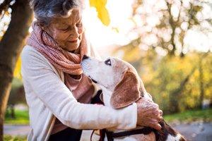 ältere frau streichelt älteren hund