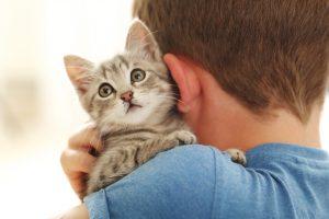 Junge mit Babykatze