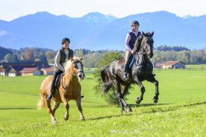 Ausritt von zwei Reitern in den Bergen