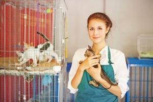 Tierpflegerin kümmert sich um Kätzchen