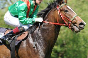 Reiter verwendet Vollblut Wallach als Rennpferd